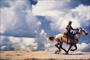 (Ковбой) (2001), $2 840 000 - 10 место