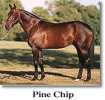 Pine Chip: 4 млн. $