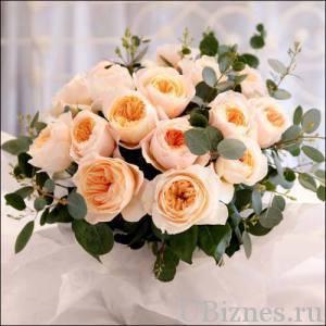 роза Джульетты - 15,8 млн. долларов